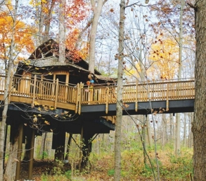 Mount Airy Forest's public treehouse - Photo: Stephanie Mathena