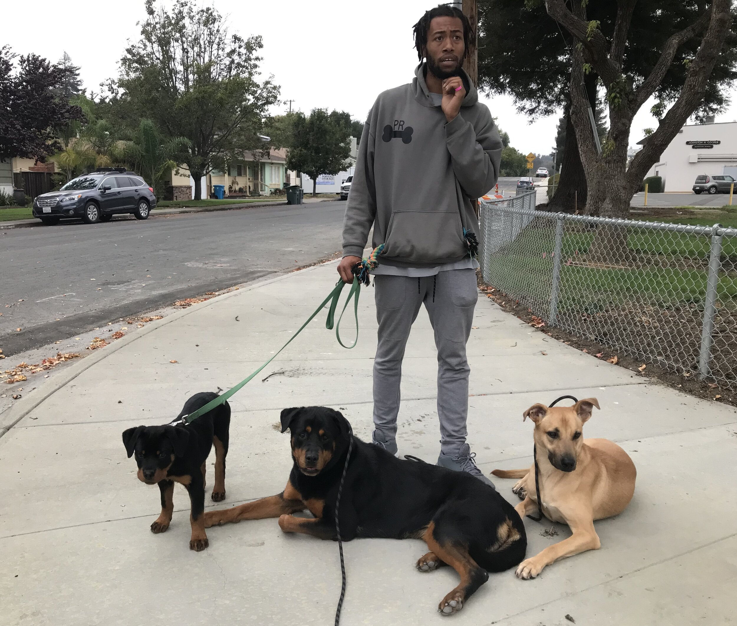 Troy with dogs.